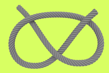 Staffordshire Knot Logo